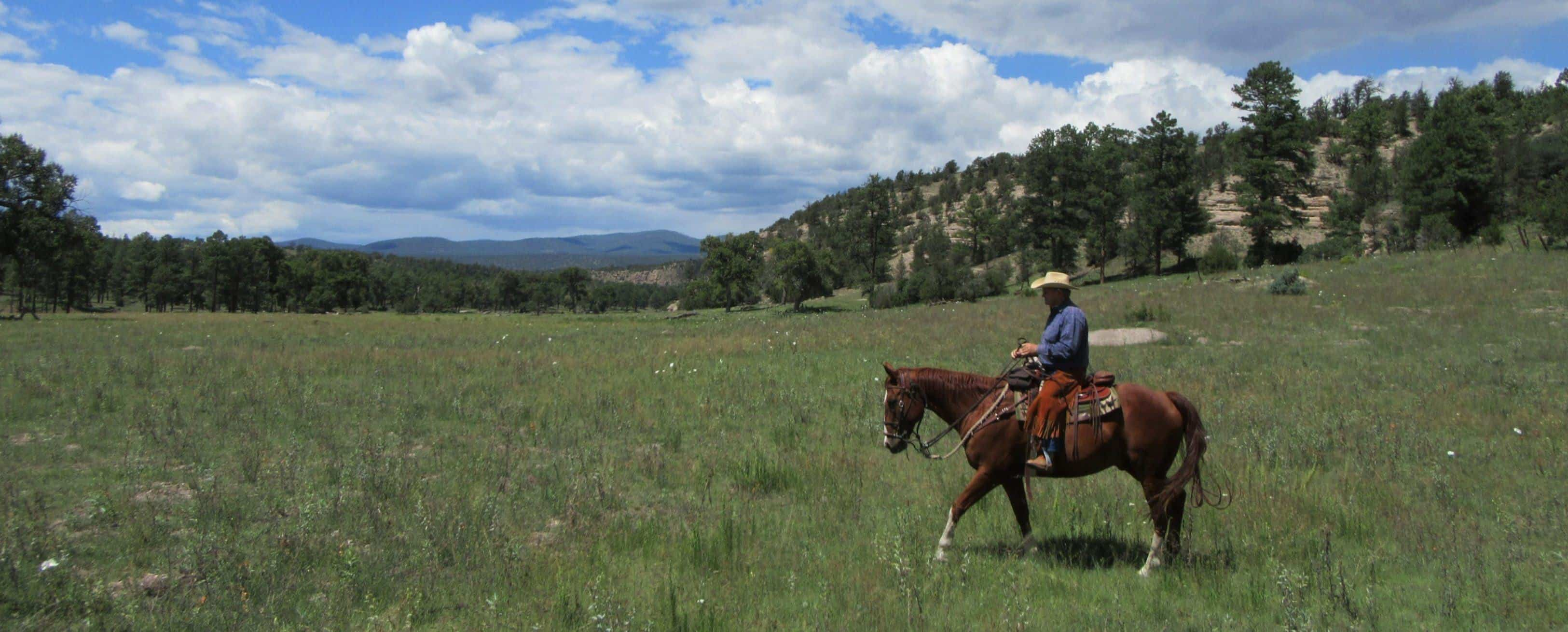 geronimo trail guest ranch the dude ranchers u0027 association