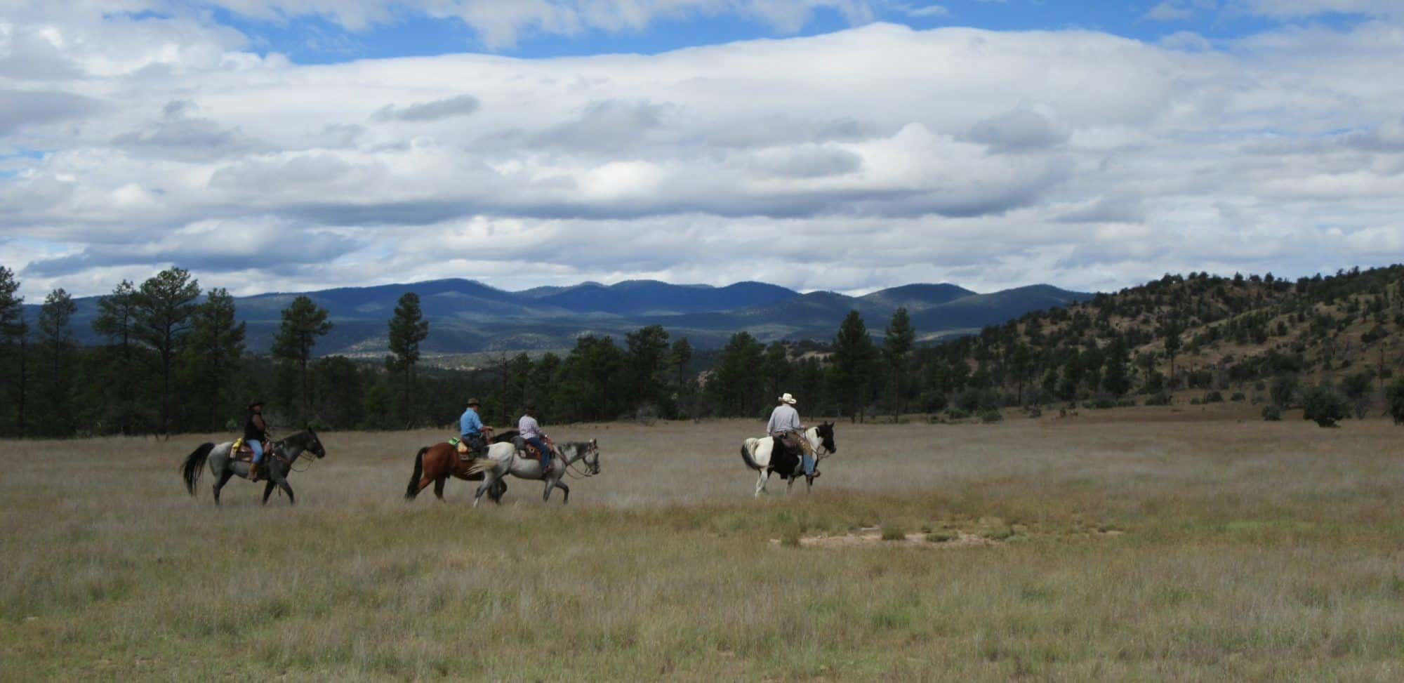 Horseback Riding at Geronimo Trail Guest Ranch, Gila National Forest, New Mexico, Trail Riding, Dude Ranch, Guest Ranch, Adventure Travel
