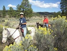 Guest Reviews, Geronimo Trail Guest Ranch, Trail Riding