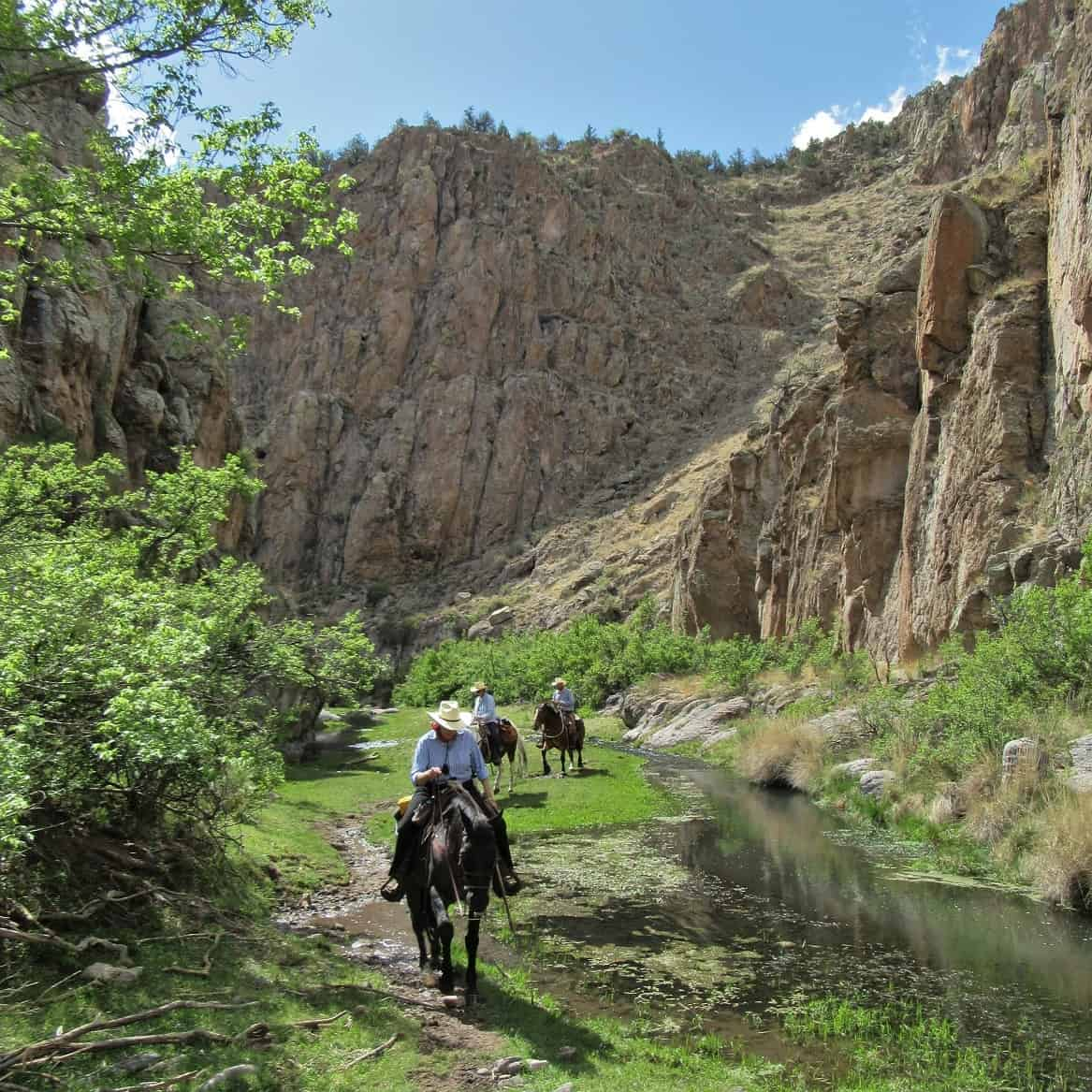 May, Spring, Summer, Trail Riding, Horseback Riding, Geronimo Trail Guest Ranch, New Mexico, Gila National Forest, Dude Ranch, Guest Ranch