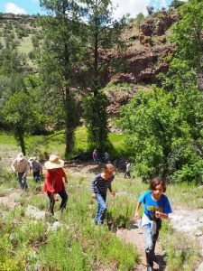 New Mexico Family Reunions