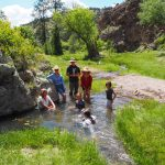 Gila National Forest Summer